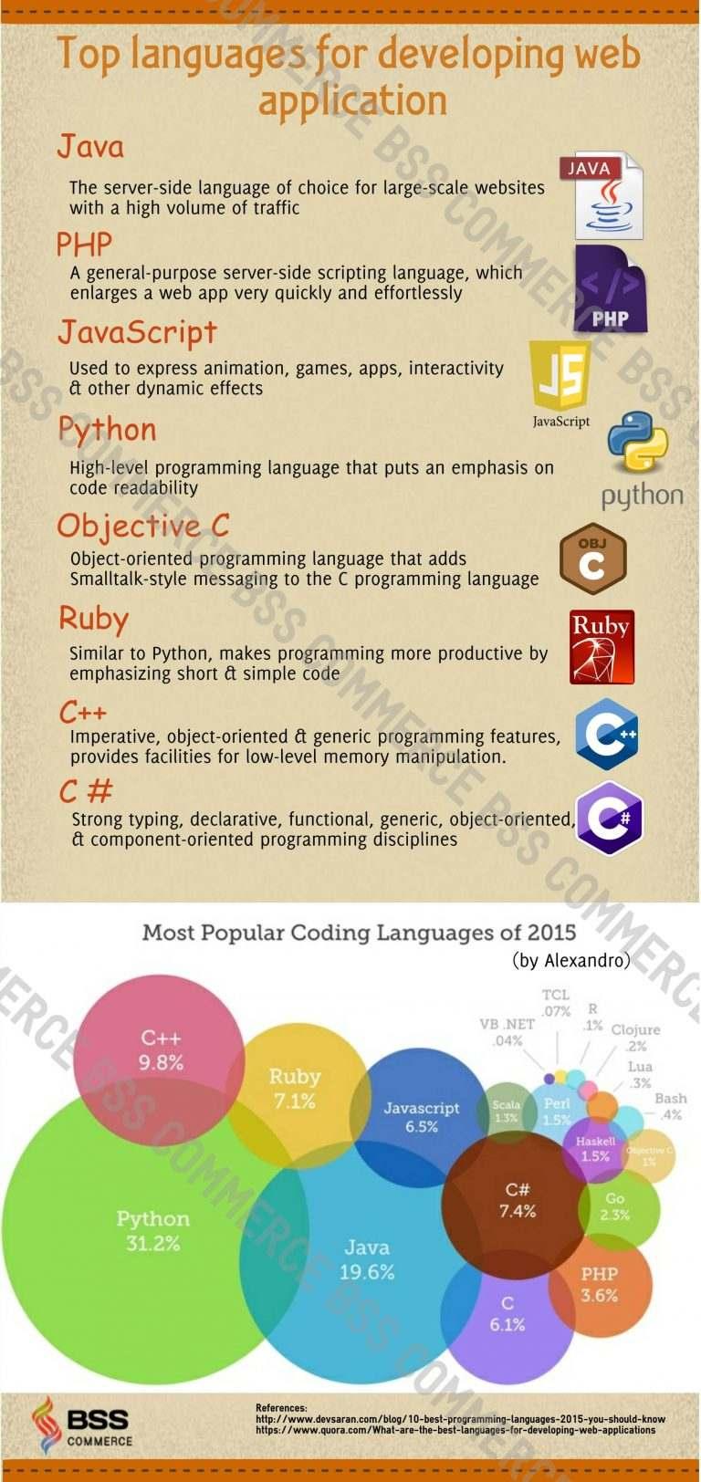 Top Programming Language for Web Application