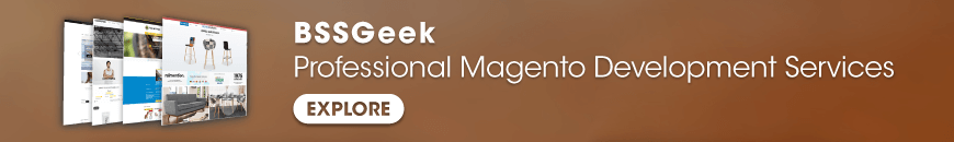 bssgeek-professional-magento-development-services6