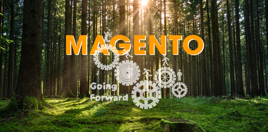 Learn Magento step by step for developer