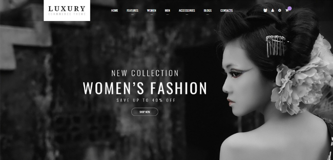 premium-magento-2-theme-luxury