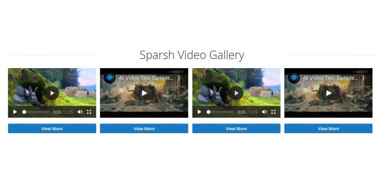 video-gallery-seo-extension
