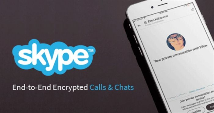 skype-businesses-that-sell-to-other-businesses-b2b-ecommerce-examples