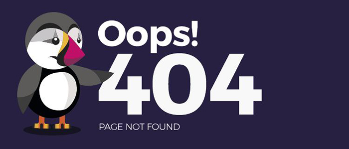 404-error-pages-that-can-be-redirected