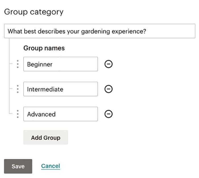 magento-2-mailchimp-group-options-form