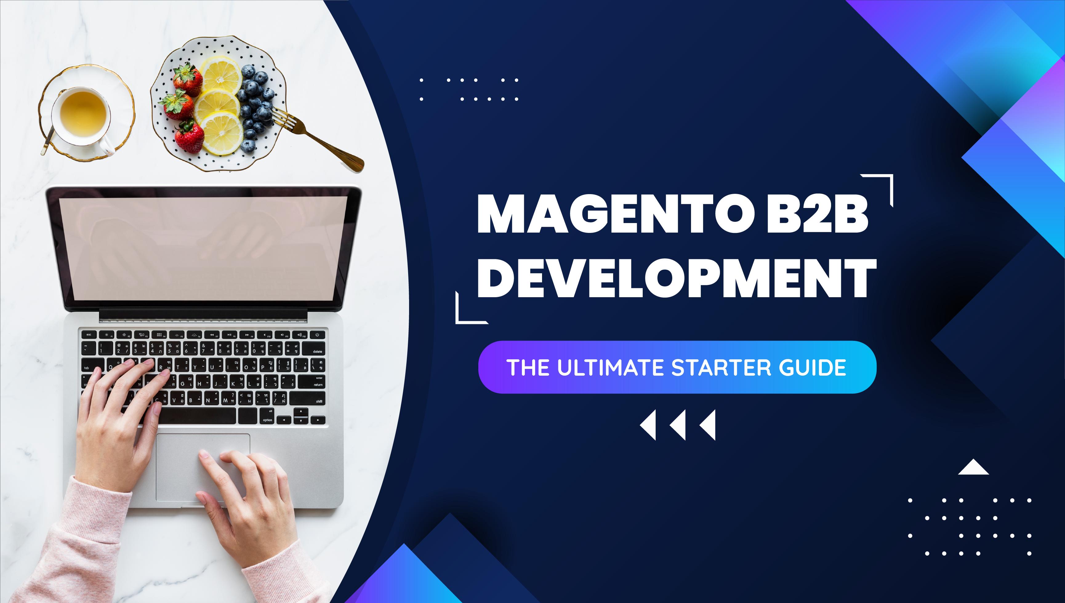magento-b2b-development