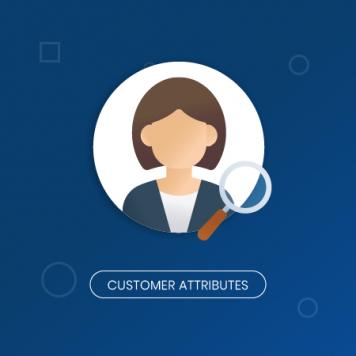 magento-2-customer-attributes-magenest