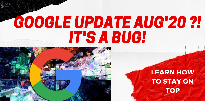 google-update-was-a-bug-afterall