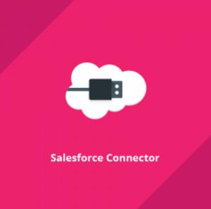 magento-2-crm-salesforce-webkul