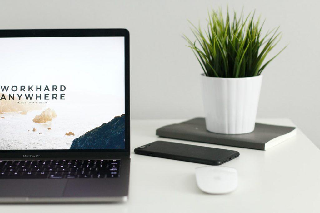 magento-b2b-website-types