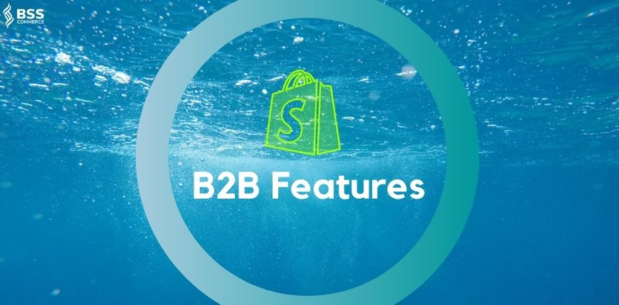shopify-b2b-features-image