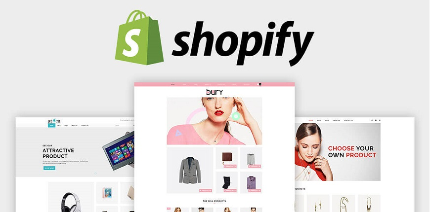 shopify-b2b-examples-website.jpg