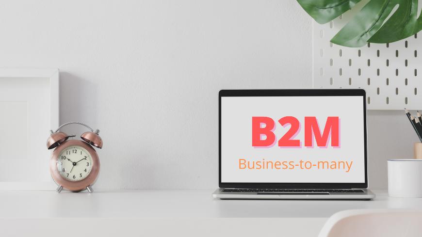 b2m-company-examples