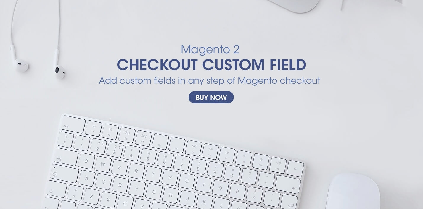 magento 2 checkout custom filed