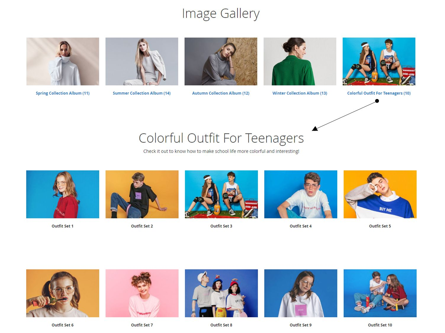 Magento 2 Gallery extension displays gallery album in Standard layout
