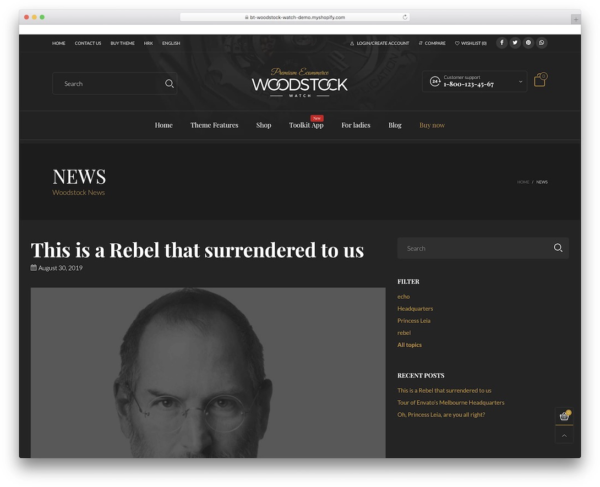 An example of Woodstock Shopify blog theme