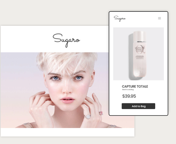 Shopify website example